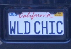 License Plate Frames and the Law